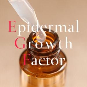 EGF美容液の効果を知らずにコスメは語れない!肌細胞を再生する活用法