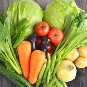 【感染症対策】免疫力アップにおすすめの食材