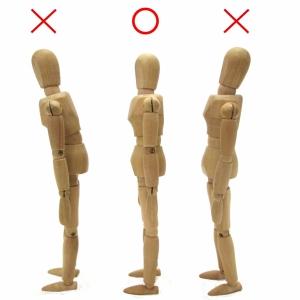 きれいな姿勢は美しさの基本 姿勢のセルフチェック法と正し方
