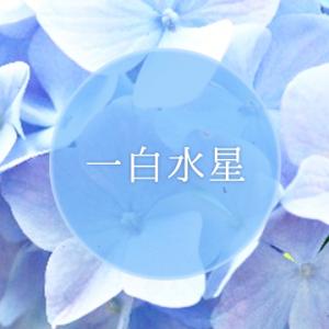 一白水星 -水が象徴の星-