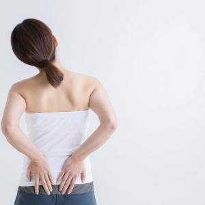 続く腰痛は内転筋群の衰えが原因⁉ 簡単なエクササイズで腰の痛みを改善