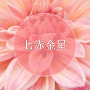 七赤金星 -星が象徴の星-