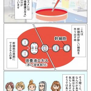 【漫画で読む美容情報】幹細胞コスメって何?