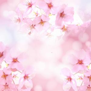 ボディに桜を咲かせましょ。POLAのサクラガーデンボディーパウダーのご紹介です!