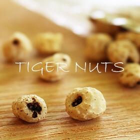 ダイエットをサポート「タイガーナッツ」の豊富な栄養素と食べ方